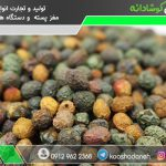 قیمت پسته کوهی در بازار تبریز
