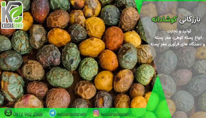 بازار خرید بنه شیرازی ارزان