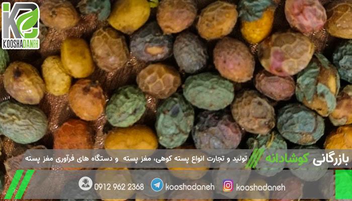 شرکت صادرات بنه شیرازی اصل