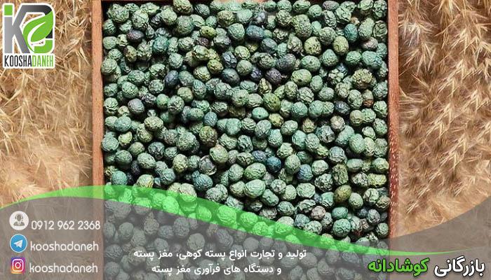 اهمیت استفاده پسته کوهی شیراز